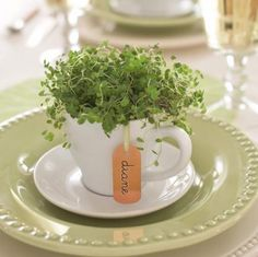 Cute cachepot ● Repurpose your coffee cups into tiny centerpieces for place settings.