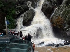 Cascadas de primavera Grand Canyon, Douro, Fauna, Niagara Falls, Waterfall, Images, Nature, Travel, Outdoor