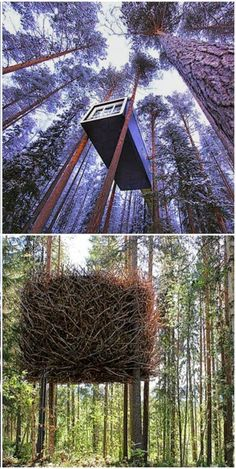 #Treehotel in #‎Swed