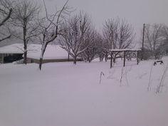 "Vernon Hensley of Elkton, Virginia says ""just a backyard view this morning."" #WHSVsnow"