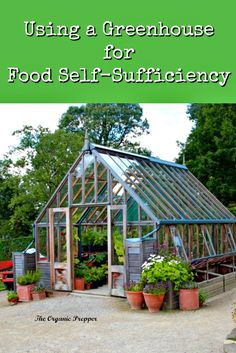 This greenhouse conveyor belt could help address the global food crisis. Here's how you can better utilize a greenhouse too. Small Greenhouse Kits, Outdoor Greenhouse, Greenhouse Effect, Build A Greenhouse, Greenhouse Interiors, Garden Yard Ideas, Cold Frame, Survival Food, Survival Guide