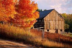 ... #barns #mills #farms