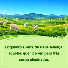 «Τα πρόβατα τα εμά ακούουσι την φωνήν μου, και εγώ γνωρίζω αυτά, και με ακολουθούσι» (Κατά Ιωάννην 10:27). Ο Θεός λέει: «Όλοι όσοι είναι ικανοί να υπακούν στις παρούσες ομιλίες του Αγίου Πνεύματος, είναι ευλογημένοι. Δεν έχει σημασία πώς ήταν κάποτε ή με τι τρόπο εργαζόταν μέσα τους το Άγιο Πνεύμα —όσοι έχουν κερδίσει το τελευταίο έργο, είναι οι πιο ευλογημένοι, και όσοι είναι ανίκανοι να ακολουθήσουν το τελευταίο έργο σήμερα, εξαλείφονται».  #Θεός #μαρτυρια #ευαγγελιο #Προσευχή #πιστη God Is, Gods Plan, Golf Courses, Opera, Jesus Cristo, Mythology, Word Of God, Meant To Be, Daily Word