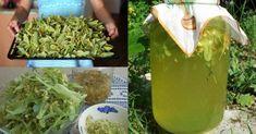 Osvěžte se letos v létě netradiční limonádou. Je chutná, je zdravá a připravíte si ji velmi jednoduše. Co je hlavní surovinou? To budete koukat. Jsou to květy jednoho poměrně významného stromu - Celery, Gardening, Vegetables, Food, Medicine, Lemon, Syrup, Garten, Vegetable Recipes
