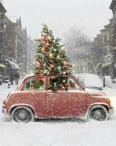 We zijn op terugweg van ons kerstweekje, genoten van de rust de drukte kan opnieuw beginnen.