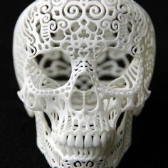 Crania Anatomica Fil