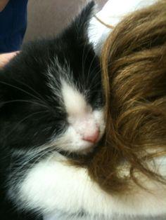 my kitty!