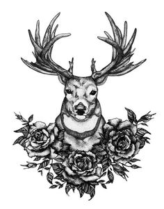 Adult Coloring Pages: Deer 1