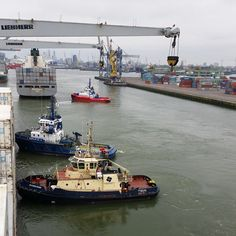 #Diversity of #tugs in #Waalhaven #PortofRotterdam: #Sparta assisting #HannahSchulte to come #alongside #pier no.6 #Uniport and #Fairplay 23 and #Svitzer #Nabi #pushing #MaerskNiagara awaiting to cast off. #Rotterdam #tug #tugboat #lekko #tugboatlovers #shipscrane #ASDtug #ASD