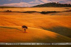tuscany landscape sunset