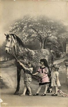 Children with big gray horse