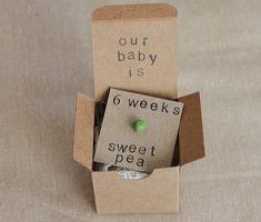 Set of 6 6 week Pregnancy Announcements How Big by ThePartyPosse