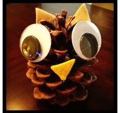 Owls.... An adorable D.I.Y