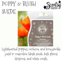 Poppy and Blush Suede - poppies, verbena, and honeysuckle yield to masculine blush suede, lush plums, blossoms, and white musk #scentsy  #fragrance  #musk