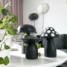 Sorvatut ja maalatut sienet sisustuksessa. Riding Helmets, Hats, Hat