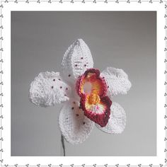 Ravelry: Orchid B pattern by Claudia Giardina @Chas Ellenburg Johnsey can u make me one???? pleaseeeee!!!