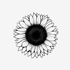 Lineart Sunflower Drawing, Sunflower, Sun, Flower PNG Transparent Clipart Image and PSD File for Fre Sunflower Drawing, Sunflower Flower, Sunflower Design, Sunflower Tattoos, Drawing Flowers, Painting Flowers, Cute Flower Drawing, Outline Art, Outline Drawings