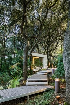 Stepped wooden walkway leading through a forest to a modern glass sided house