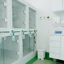 Resultado de imagem para hospital veterinario projeto