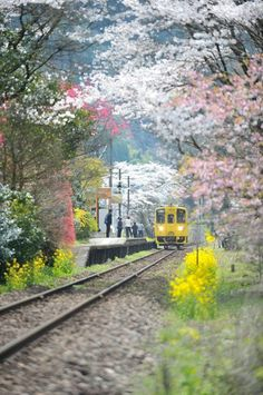 A local train station in Kyushu Japan(translation)GT Line Station Bungo Nakagawa far Kenji Koji. Here you relax with these backyard landscaping ideas and landscape design. Go To Japan, Visit Japan, Places Around The World, Around The Worlds, Beautiful World, Beautiful Places, Japon Tokyo, Kyushu, Train Travel