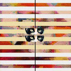 ava collage by laura redburn Scrapbook Paper, Scrapbooking, Illustration Artists, Artsy Fartsy, Collage Art, Art Inspo, Cats Of Instagram, Ava, Cool Designs