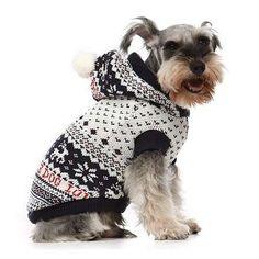 Abrigos de ganchillo para perros: Fotos de ideas - Diseño de abrigo de perros estampado