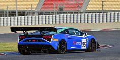 Lamborghini Gallardo GT3 / Thierry Verstraete / BEL / NSC Motorsports / BEL