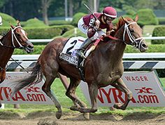 Harold Queen's Sheer Drama played spoiler Aug. 29, defeating both Stopchargingmaria and Untapable in the $750,000 Personal Ensign at Saratoga Race Course.