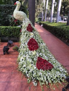A magnificent creation of roses and jasmine , set at the entryway to a traditional Indian wedding. A scented greeting that can only be seen in Jodhpur India Topiary Garden, Garden Art, Wedding Stage Decorations, Flower Decorations, Beautiful Flowers Garden, Beautiful Gardens, Funeral Flowers, Wedding Flowers, Montreal Botanical Garden