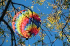 Balloon flights all around the year 天天翱翔天際