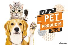 Best pet products 2020 - Being a pet owner means that you are responsible for another life. As a modern pet owner, you have - Best Badminton Racket, Electric Skillet Recipes, Some Love Quotes, Easy Food To Make, How To Make, Eyelash Logo, Cast Iron Recipes, Galaxy Art, Cool Things To Buy