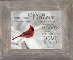 When You Believe Cardinal Personalized – Summer Snow Art Cardinal Birds Meaning, Bird Meaning, When You Believe, Heaven Poems, Signs From Heaven, Grief Poems, Grieving Quotes, Snow In Summer, Picture Frame Decor