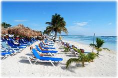 Costa Maya, Mexico ღ Cozumel Cruise, Caribbean Cruise, Cruise Port, Costa Maya Mexico, Holidays To Mexico, Shore Excursions, Cruise Travel, Travel Destinations, Travel Tips