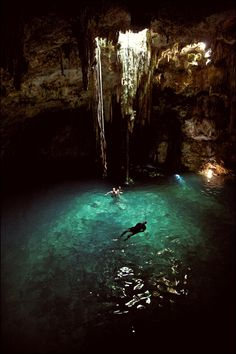 Cenote in Yucatan Mexico. Freshwater caves created by the KT meteorite millions of years ago.
