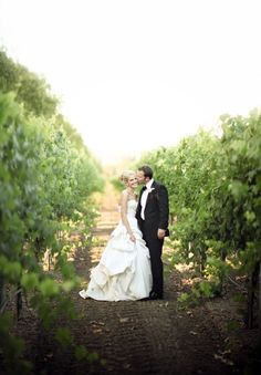 vineyard. bride and groom.