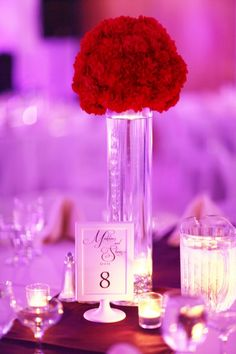 Red wedding centerpieces - Red and Purple Clearwater Beach Rec Center Wedding