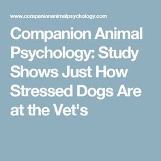 Companion Animal Psychology: Study Shows Just How Stressed Dogs Are at the Vet's