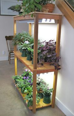 grow lights from Lee Valley garden Pinterest Technology