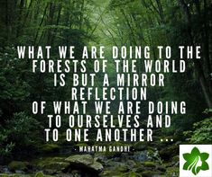 Think about this and reflect! Mahatma Gandhi, Natural Products, Tgif, Truths, Reflection, Friday, Queen, World, Nature
