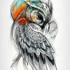 Diseño del búho diseños para mujeres
