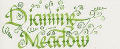 Ink Review: Diamine Meadow — seize the dave