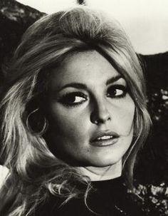 The gorgeous Sharon Tate.