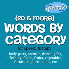 Categories for Speech Therapy Practice