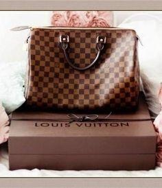 Louis Vuitton Damier Ebene Canvas Speedy Bags 30 N41531