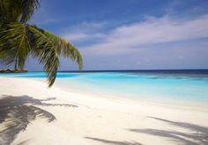 lily beach maldive