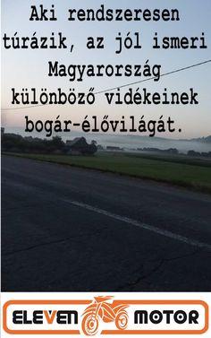 """""""Aki rendszeresen túrázik, az jól ismeri Magyarország különböző vidékeinek bogár-élővilágát."""""""