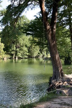 Medina River in Bandera, TX.....as a kid, we would jump in and cool off when visiting my Grandpa Joe....good times :)