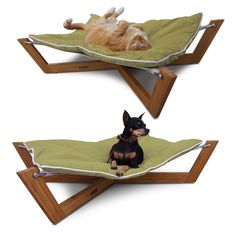 {Cross Pet Hammock Green} Pet Lounge Studios - totally want this for all the critters that lounge in my backyard to use!
