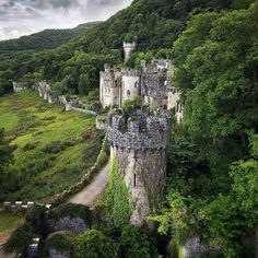 Explore the mysterious Gwrych Castle in Wales, deep within the forest!