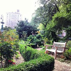 Pretty little spot to sit in Greenwich Village. During the summer there's koi in the ponds and you can bring your pup!